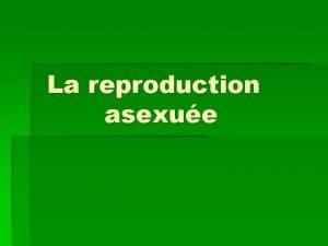 La reproduction asexue Reproduction asexue La reproduction asexue