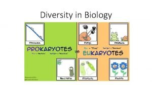 Diversity in Biology Taxonomy Taxonomy is the science