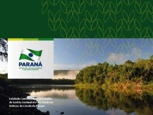 Entidade Coordenadora do Sistema de Gesto Ambiental e