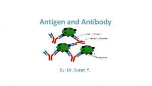 Antigen and Antibody By Dr Suzan Y Antigen