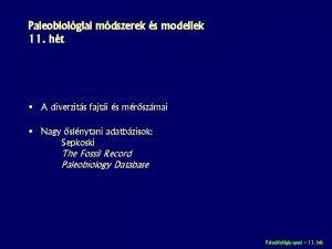 Paleobiolgiai mdszerek s modellek 11 ht A diverzits