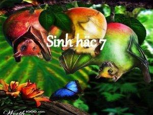 Sinh hc 7 Sinh HC LP 7 Thc