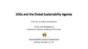 SDGs and the Global Sustainability Agenda Prof Dr
