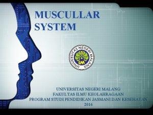 MUSCULLAR SYSTEM UNIVERSITAS NEGERI MALANG FAKULTAS ILMU KEOLAHRAGAAN