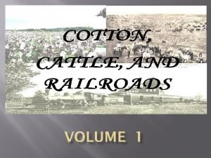 Cotton Cotton had long been big business in