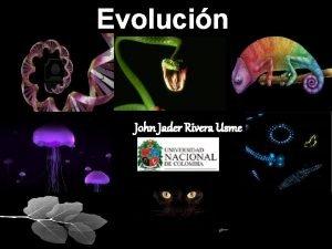 Evolucin John Jader Rivera Usme LA EVOLUCIN BIOLGICA