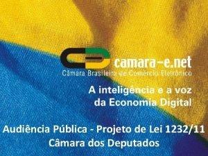 Audincia Pblica Projeto de Lei 123211 Cmara dos