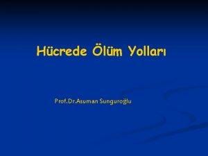 Hcrede lm Yollar Prof Dr Asuman Sungurolu APOPTOZS