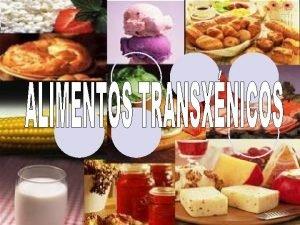 Que son Os alimentos transxnicos son todos aqueles
