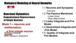 Biological Modeling of Neural Networks 1 1 Neurons
