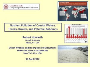 Nutrient Pollution of Coastal Waters Trends Drivers and