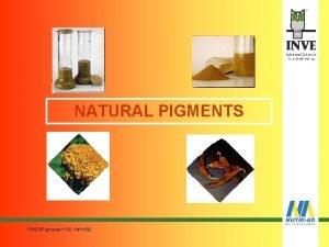 NATURAL PIGMENTS PRESPigments1 DD 141102 PIGMENTATION ORIGINATED HISTORICALLY