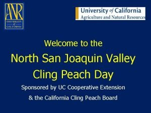 Welcome to the North San Joaquin Valley Cling