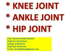 KNEE JOINT ANKLE JOINT HIP JOINT Prof Ahmed