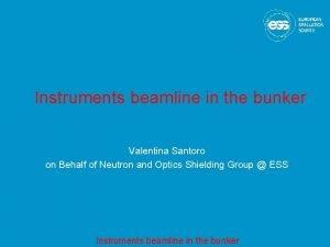 Instruments beamline in the bunker Valentina Santoro on