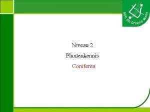 Niveau 2 Plantenkennis Coniferen Plantenkennis Naam Hoogte Bloei