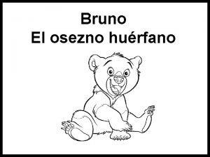 Bruno El osezno hurfano Hace mucho mucho tiempo
