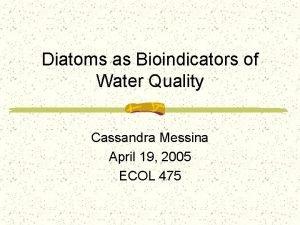 Diatoms as Bioindicators of Water Quality Cassandra Messina