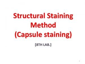 Structural Staining Method Capsule staining 8 TH LAB
