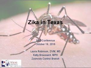 Zika in Texas ELC Conference October 19 2016