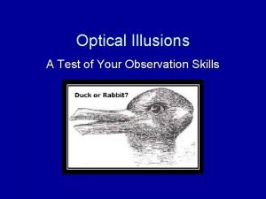Optical Illusions A Test of Your Observation Skills