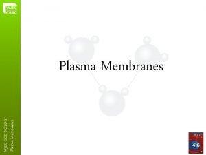 Plasma Membranes WJEC GCE BIOLOGY Plasma Membranes 4
