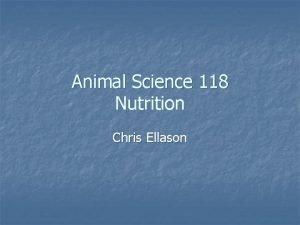 Animal Science 118 Nutrition Chris Ellason Nutrient Classes