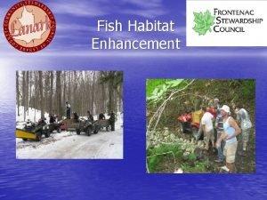 Fish Habitat Enhancement Fish Habitat Enhancement Bass Provide