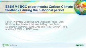 E 3 SM V 1 BGC experiments CarbonClimate