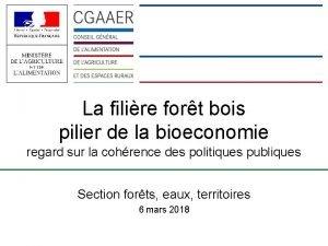 La filire fort bois pilier de la bioeconomie