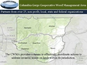 Columbia Gorge Cooperative Weed Management Area Partners from
