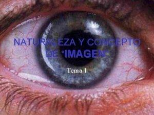 NATURALEZA Y CONCEPTO DE IMAGEN Tema 1 1