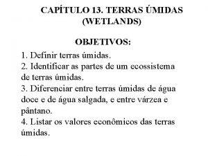CAPTULO 13 TERRAS MIDAS WETLANDS OBJETIVOS 1 Definir