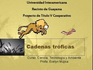 Universidad Interamericana Recinto de Guayama Proyecto de Ttulo