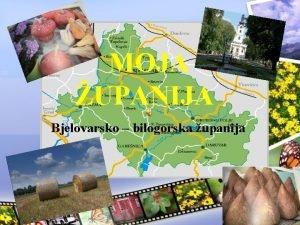 MOJA UPANIJA Bjelovarsko bilogorska upanija Smjetaj upanije Smjetena