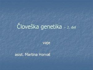 loveka genetika 2 del vaje asist Martina Horvat