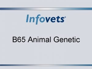 B 65 Animal Genetic Lesson Outline Introduction Phenotype