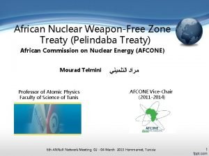 African Nuclear WeaponFree Zone Treaty Pelindaba Treaty African