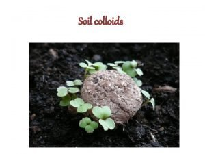 Soil colloids CHEMICAL PROPERTIES OF SOIL Soil Colloids