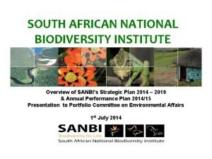 SOUTH AFRICAN NATIONAL BIODIVERSITY INSTITUTE Overview of SANBIs