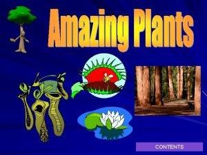CONTENTS Contents Venus fly trap Pitcher Plant Giant