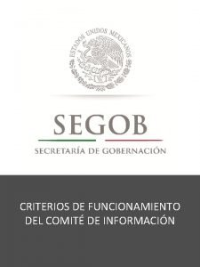 CRITERIOS DE FUNCIONAMIENTO DEL COMIT DE INFORMACIN Comit