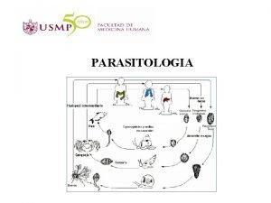 PARASITOLOGIA PARASITOLOGIA Rama de la biologa o microbiologa