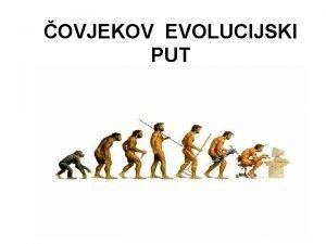 OVJEKOV EVOLUCIJSKI PUT Kao sva iva bia i