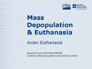 Mass Depopulation Euthanasia Avian Euthanasia Adapted from the