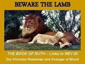 BEWARE THE LAMB THE BOOK OF RUTH Links