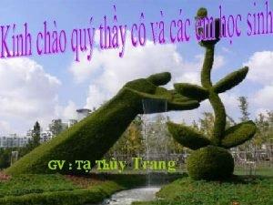 GV T Thy Trang 11252020 1 Bin d
