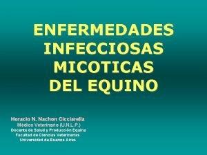 ENFERMEDADES INFECCIOSAS MICOTICAS DEL EQUINO Horacio N Nachon