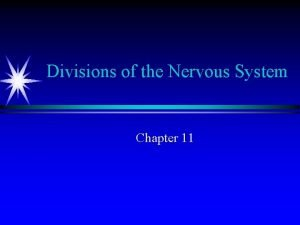 Divisions of the Nervous System Chapter 11 Meninges