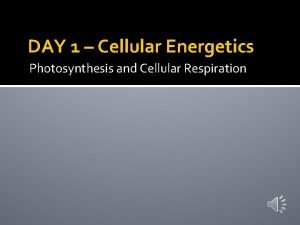 DAY 1 Cellular Energetics Photosynthesis and Cellular Respiration